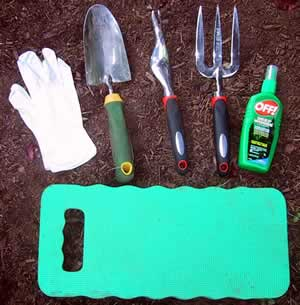 Weeding Basics Garden Getting Started Articles Welcome to